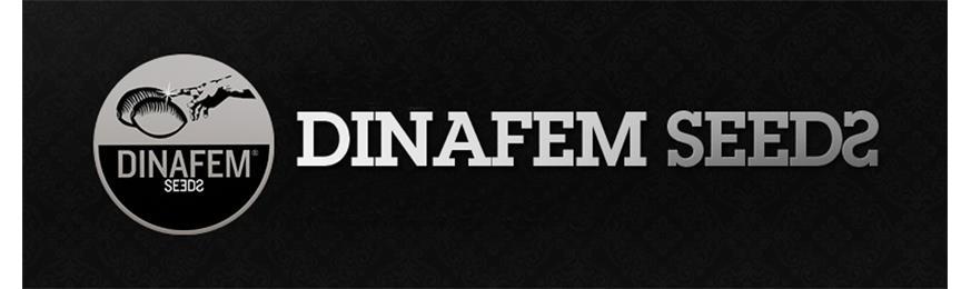 dinafem-seeds-eurogrow